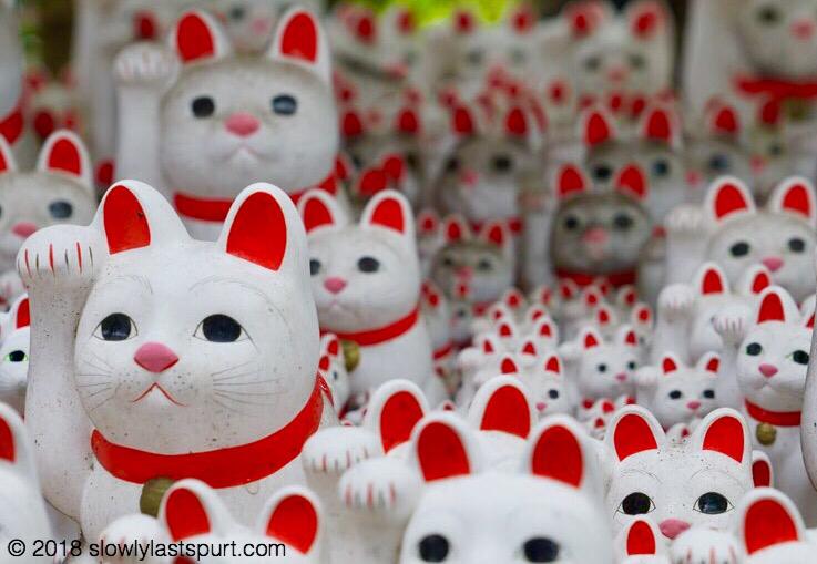 招き猫 豪徳寺