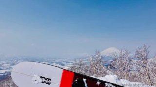 MOSS SNOWSTICK long