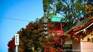かえる寺 如意輪寺